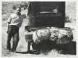 Vernon Evans, Migrant to Oregon from South Dakota