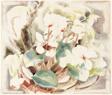 Flowers (Cyclamen)