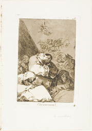 Correction, plate 46 from Los Caprichos