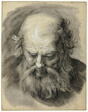 Study of the Head of a Bearded Man