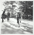 Jacob's Pillow, Inside/Out, Jazz Students, Becket, MA