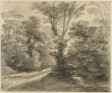 A Sunlit Path through a Wood
