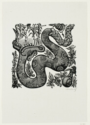 Rattlesnake, illustration for Melodic Incidents of the Irrational World, from Méndez: 25 Prints