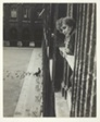 Colette at her Window in the Palais Royal