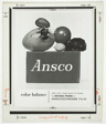 Ansco, fruits with bee on Ansco block