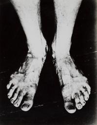 Legs (Nogi)
