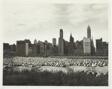 Untitled (Chicago)