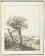 Studies of Trees for Beginning Landscape Artists (Baumstudien für Angehende Landschaftszeichner)