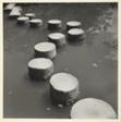 Stepping Stones in Iris Pond-Kyotot