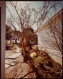 Backyard off U.S. 98, Apalachacola, Florida