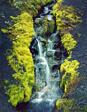 Moss, Waterfall, Cinders, Near Mt. Hekla, Iceland