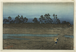 Evening at the Tama River