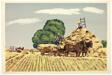 Wheatfield Harvest
