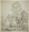 A Stand of Elm Trees (recto); A Study of East Bergholt with the Church (verso)
