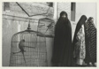 Iran: Shiraz - Three Women With Caged Birds