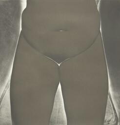 Nude No. 150, New York