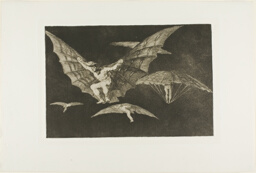 A Way of Flying, from Disparates, published as plate 13 in Los Proverbios (Proverbs)