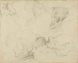 Seven Caricatures of Heads