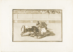 A Picador is Unhorsed and Falls under the Bull, plate 26 from The Art of Bullfighting