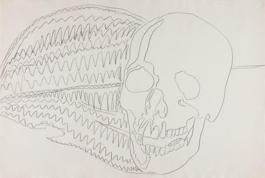 Skull | The Art Institute of Chicago
