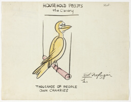 Thousands of People Own Canaries, from Household Pe(s)ts: The Canary