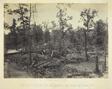 Battle Field of Atlanta, GA No. 1