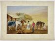 An Arab Horse Merchant