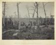 Battle Ground of Resacca, GA, No. 3