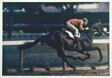 Racehorse: Morning Work - Breezing Out a Three-Year Old