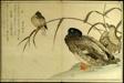 Myriad Birds: A Kyoka Competition (Momo chidori kyoka awase)