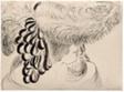 Girl in Plumed Hat (Mlle Antoinette)
