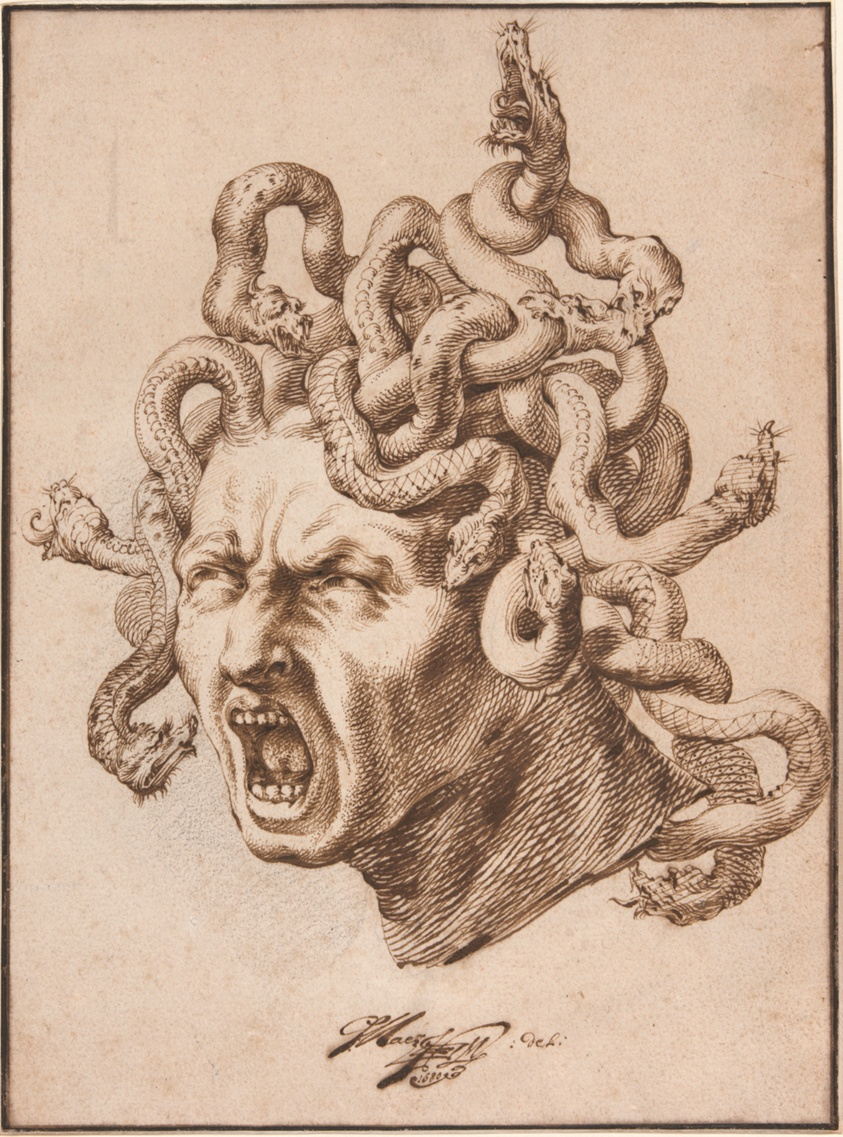 Image result for Godfried Maes. Head of Medusa, 1680. The Art Institute of Chicago, Prints and Drawings Purchase Fun