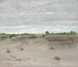 Wind-Swept Sands