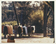 Racehorse: The Barn - Hot Walkers Cooling Out a String of Horses After Morning Work