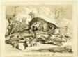 Tartars or Russians Hunting an Elk