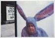 Bunny Ear Bus Stop, New York City