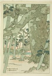 "Pine Tree at Karasaki (Karasaki no matsu), from the series ""Eight Views of Omi (Omi hakkei)"""