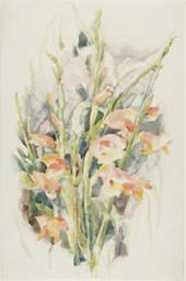 Gladioli - Flower Study #4
