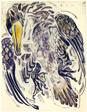 Dead Cormorant