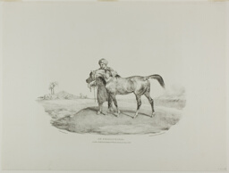 An Arabian Horse, plate 8 from Various Subjects Drawn from Life on Stone