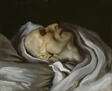 Study of the Head of a Corpse