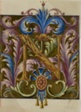 "Illuminated Initial ""N"" with Acanthus Leaves from a Choirbook"