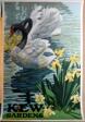 Kew Gardens, Black Swans