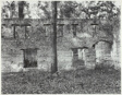 Ruin of Tabby (Shell) Construction, St. Mary's, Georgia
