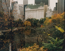 Central Park Looking Toward the Plaza Hotel, New York