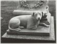 Marble Dog, Mount Auburn Cemetery, Watertown, Massachusetts
