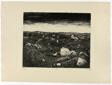 Evening on the Wijtschaete Plain (November 1917), from War