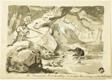 North American Bear Hunting (recto); Shell (verso)