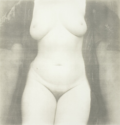 Nude No. 111, New York