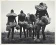 Guardians of a Circumcision Ceremony, Bapende People, Belgian Congo